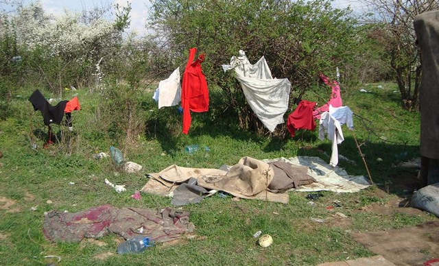 The trash dump in Oradea